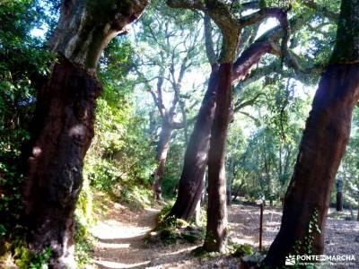 Sierra Aracena-Minas RíoTinto;turismo activo zapatillas para andar pueblos con encanto madrid amist